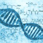 Ученые усовершенствовали CRISPR для более эффективного лечения