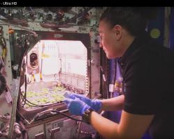 Опубликовано первое в истории видео в разрешении 8K из космоса