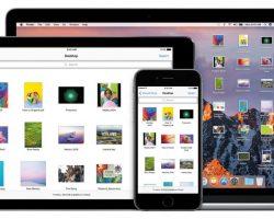 Тим Кук опроверг намерения Apple объединить платформы macOS и iOS