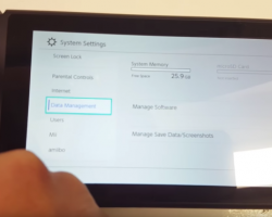 Несколько консолей Nintendo Switch были украдены и проданы еще до официального начала продаж
