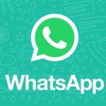 Бета-версия WhatsApp стала доступна для Android-планшетов