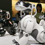 Sony после многолетнего перерыва возобновляет производство роботов, по типу Aibo