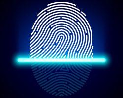 Ученые из Нью-Йоркского университета смогли обмануть сканер отпечатков пальцев