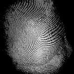 Пользователь смог обмануть ультразвуковой сканер смартфона Samsung Galaxy S10