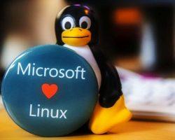 Microsoft вступила в организацию Linux Foundation