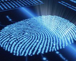 64% всех проданных за 2017 год смартфонов было оснащено сканерами отпечатков пальцев