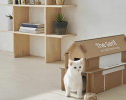 Как сделать домик для кошки из картонной коробки? Samsung поможет